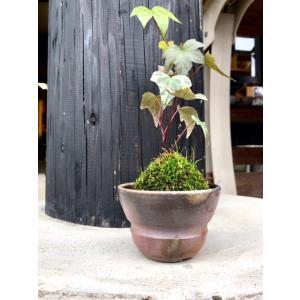 植木鉢 胴締(ミニ) kanayamayaki