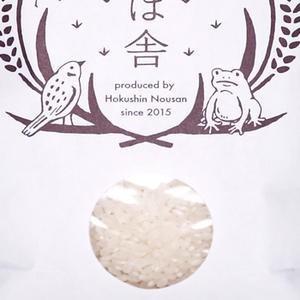 稲ほ舎 金のかえる(農薬・化学肥料不使用コシヒカリ)白米2kg kanazawa-honpo 02