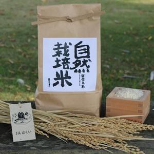 JAはくい はくい自然栽培米コシヒカリ(精米)1kg【平成30年産米】|kanazawa-honpo