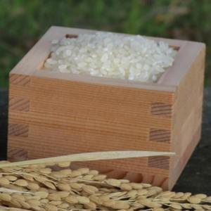 JAはくい はくい自然栽培米コシヒカリ(精米)1kg【平成30年産米】|kanazawa-honpo|02