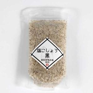 能登製塩 奥能登海水塩使用 塩こしょう 100g|kanazawa-honpo