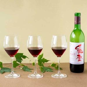 能登ワイン 2018年産 NselecT ヤマソーヴィニヨン赤ワイン 720ml【母の日】【父の日】|kanazawa-honpo