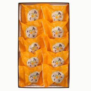 菓匠 高木屋 パリパリのパイと甘酸っぱいあんずの組み合わせ あんずパイ 10個入り【金沢土産】【金沢の和菓子】【お中元】【お歳暮】【ギフト】|kanazawa-honpo
