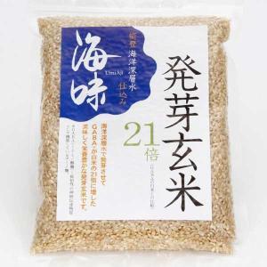 海味 能登海洋深層水仕込み「海味」発芽玄米(500g×1袋) kanazawa-honpo