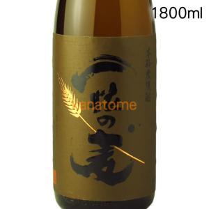 一粒の麦  1800ml|kanazawa-saketen