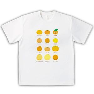 みかん 男女兼用Tシャツ オリジナルデザイン 柑橘イロイロ|kanbankobo