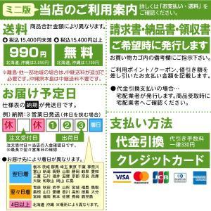 のれん 暖簾 「 鮨 」 ( 縦 65cm × 横 170cm )|kanbanshop|02