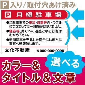 お願い 駐車場 看板 管理看板 Pマークありタイプ (VPAシリーズ) 角丸加工 ( 色 文章 組み合わせ 自由 セミオーダー 案内 注意 )|kanbanshop