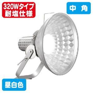 岩崎電気 E30415W/NSAN2 LED投光器 レディオックフラッドスポラート 310Wタイプ (メタルハライドランプ1000W相当) 広角 耐塩仕様 kanbanzairyou