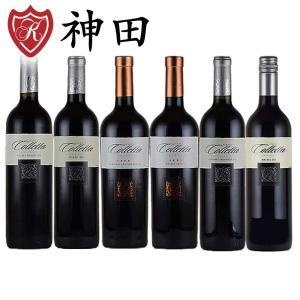 赤ワインセット カーサ・コレッタ 6本セット 全てフルボディ アルゼンチン wine set|kandasyouten