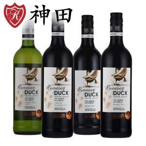 酸化防止剤 無添加ワイン オーガニックワイン 赤 ワイン 4本 セット フェアトレード 南アフリカ 750mlx4本|kandasyouten