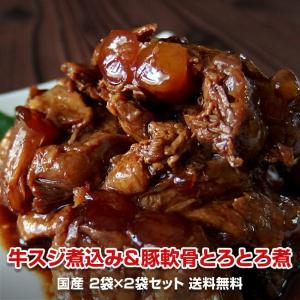 送料無料 とろとろセット 国産牛スジ煮込み2袋と国産豚軟骨とろとろ煮2袋のセット 計4食|kande-pro