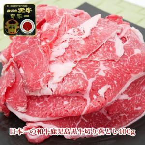 【送料込み】日本一の和牛鹿児島黒牛切り落とし400g|kande-pro