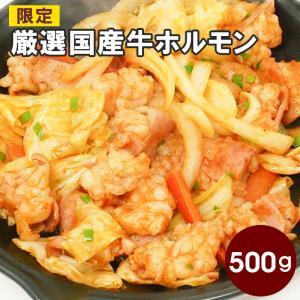 【期間限定おトク商品】厳選国産牛ホルモン(牛小腸)500g