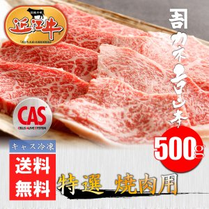 【CAS冷凍】近江牛 特選焼肉用 500g|kanekiti