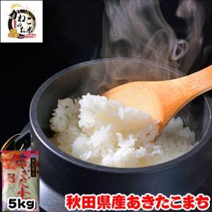 米 お米 5kg 秋田県産 あきたこまち 熨斗紙 名入れ ギフト対応|kanekokome