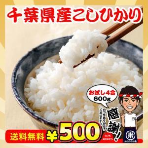 お米 お試し ポイント消化 送料無料 千葉県産 コシヒカリ 4合(600g)|kanekokome