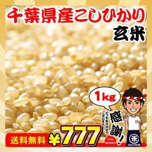 ポイント消化 真空包装 送料無料 新米 お米 1kg 千葉県産 コシヒカリ 玄米 選別調整済み 日時指定対応不可|kanekokome