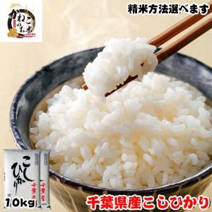 お米 29年度 千葉県産 こしひかり 10kg (5kgx2袋) ※五分搗き 七分搗き 白米 選択可|kanekokome