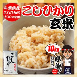 お米 29年度 千葉県産 こしひかり 玄米 10kg (5kgx2袋)|kanekokome