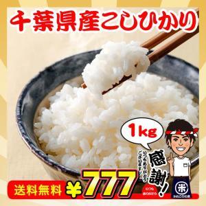 ポイント消化 送料無料 米 お米 1kg 千葉県産 コシヒカリ 日時指定不可 お試し 真空包装|kanekokome