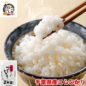 米 お米 2kg 千葉県産 コシヒカリ ラッピング対応不可|kanekokome