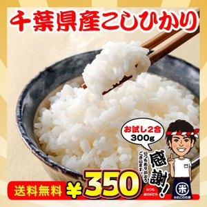 新米 お試し ポイント消化 送料無料 千葉県産 コシヒカリ 2合(300g)|kanekokome