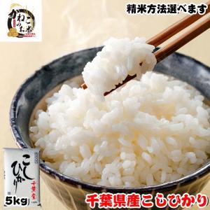 米 お米 5kg 千葉県産 コシヒカリ ※五分搗き 七分搗き 白米 選択可 熨斗紙 名入れ ギフト対応|kanekokome