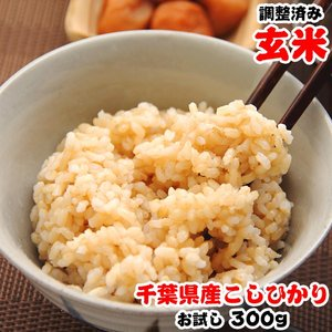 お米 お試し ポイント消化 千葉県産 コシヒカリ 玄米 2合(300g)