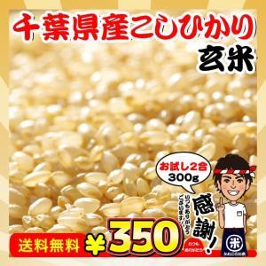 新米 お試し ポイント消化 送料無料 千葉県産 コシヒカリ 玄米 2合(300g)|kanekokome