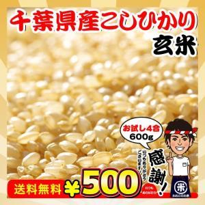 新米 お試し ポイント消化 送料無料 千葉県産 コシヒカリ 玄米 4合(600g)|kanekokome