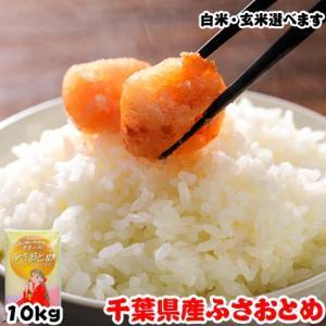 米 お米 10kg (5kgx2袋) 千葉県産 ふさおとめ|kanekokome