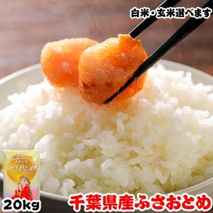 米 お米 20kg (5kgx4袋) 千葉県産 ふさおとめ 熨斗紙 名入れ ギフト対応|kanekokome