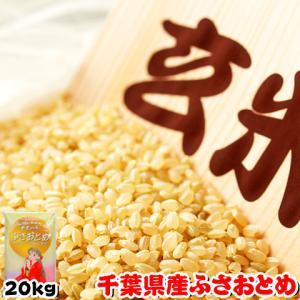 米 お米 20kg (5kgx4袋) 千葉県産 ふさおとめ 玄米 選別調整済み 熨斗紙 名入れ ギフト対応|kanekokome