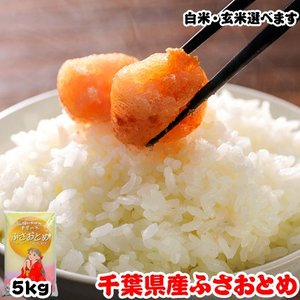 米 お米 5kg 千葉県産 ふさおとめ|kanekokome