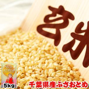 お米 28年度 千葉県産 ふさおとめ 玄米 5kg...
