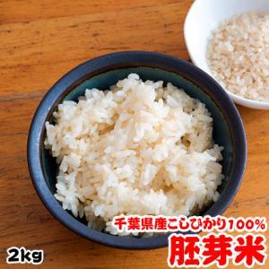 新米 お米 29年度(2017) 千葉県産 胚芽米 こしひかり 2kg|kanekokome