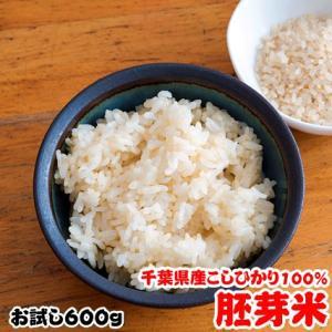 お米 お試し ポイント消化 送料無料 千葉県産 胚芽米 コシヒカリ 4合 (600g)|kanekokome