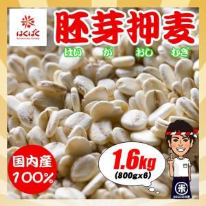 はくばく 胚芽押麦 800gx2袋 いつものご飯に混ぜて炊くだけ|kanekokome