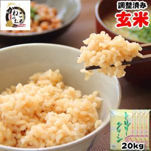 米 お米 20kg (5kgx4袋) 千葉県産 ミルキークイーン 玄米 選別調整済み 熨斗紙 名入れ ギフト対応|kanekokome