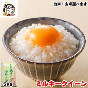 米 お米 5kg 千葉県産 ミルキークイーン 白米or玄米選択可