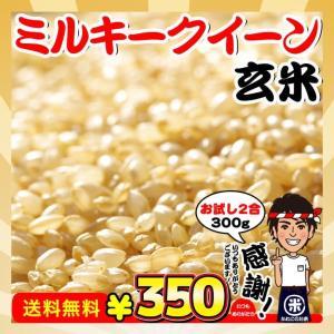 新米 お試し ポイント消化 送料無料 千葉県産 ミルキークイーン 玄米 2合  (300g)|kanekokome