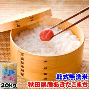 お米 29年度 秋田県産 無洗米 あきたこまち 20kg (5kgx4袋)|kanekokome