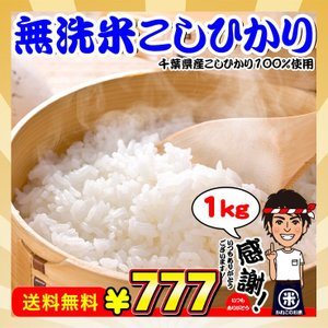 ポイント消化 真空包装 送料無料 新米 お米 1kg 千葉県産 無洗米 コシヒカリ 日時指定対応不可|kanekokome