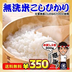 新米 お試し ポイント消化 送料無料 無洗米 千葉県産 コシヒカリ 2合(300g)|kanekokome