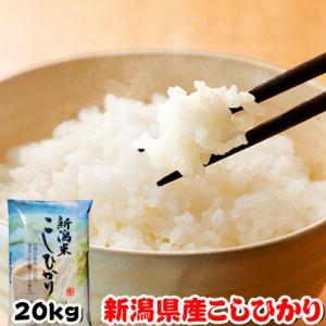 お米 29年度 新潟県産 こしひかり 20kg (5kgx4袋)|kanekokome
