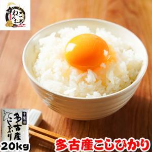 米 お米 20kg (5kgx4袋) 千葉県 多古産 コシヒ...