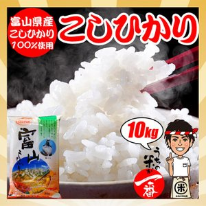 米 お米 10kg (5kgx2袋) 富山県産 こしひかり|kanekokome