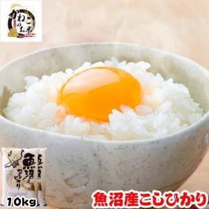 米 お米 10kg (5kgx2袋) 新潟県 魚沼産 コシヒカリ 熨斗紙 名入れ ギフト対応|kanekokome
