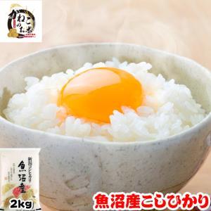 米 お米 2kg 新潟県 魚沼産 コシヒカリ ラッピング対応不可|kanekokome